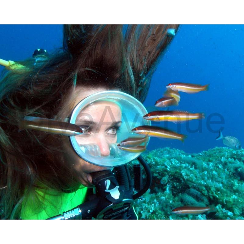 Underwater model's mask