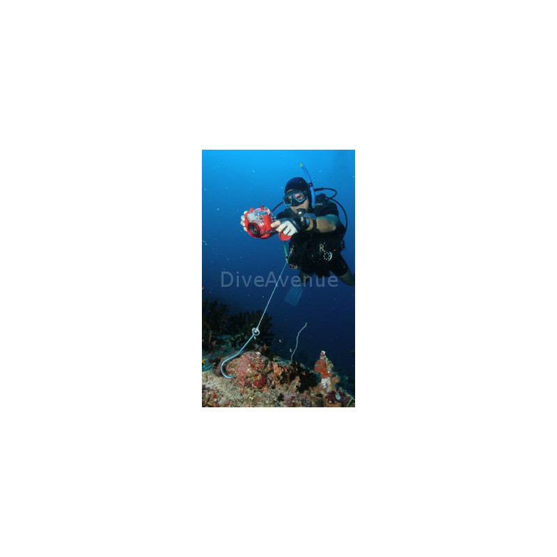 Crochet de récif