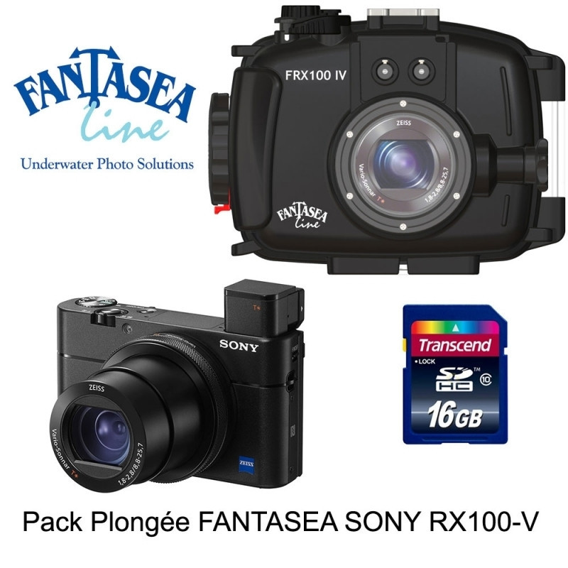 Pack Fantasea housing + Sony RX100 V +SD card